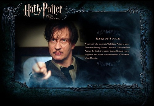 Harry Potter wallpaper probably with a sign and Anime entitled OOTP Character descrizione - Lupin