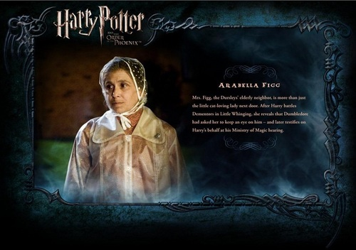 Harry Potter wallpaper probably with a sign entitled OOTP Character descrizione - Mrs. Figg