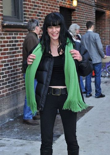 Pauley Visits David Letterman