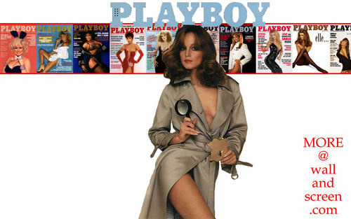 Playboy wallpaper probably with a trench coat called Playboy Covers Celebrity 02 Pamela Sue Martin