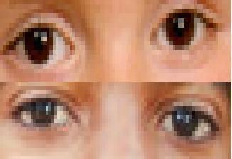 Prince and Michael eye comparison