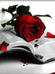 Read with a Rose