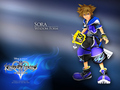 Sora Wisdom Form - kingdom-hearts-2 photo