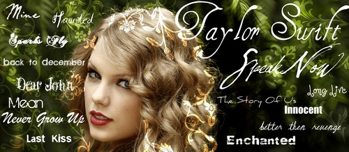 Taylor Swift Banner (visit www.taylorswiftaneverendingstar.webs.com for more)