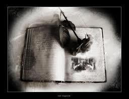 きみに読む物語