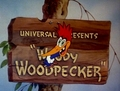 Woody woodpecker  - woody-woodpecker screencap