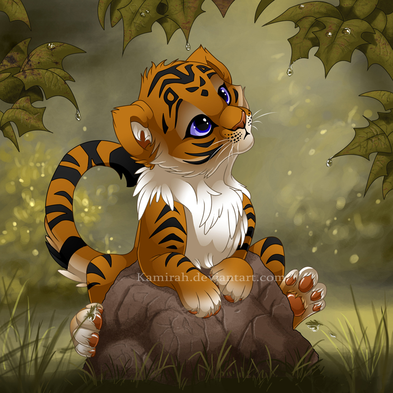 Cute Tiger Pictures All Big Cats