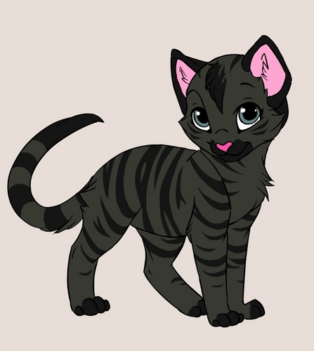 cartoon black tiger