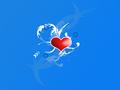 amor u