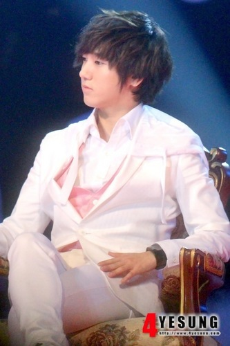 Super Junior Обои entitled 12 Plus Miracle день - Yesung