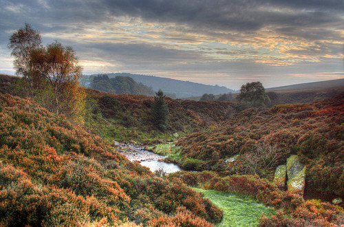 Beautiful Yorkshire....The North York Moors