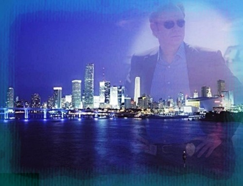 CSI - Miami Hintergrund with a business district called CSI-Miami