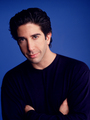 David - david-schwimmer photo