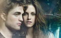 Edward&Bella - bella-swan wallpaper
