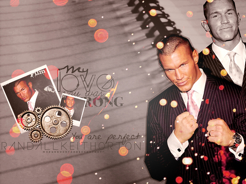 Randy Orton wallpaper possibly containing a sign and a street entitled Elegant Randy