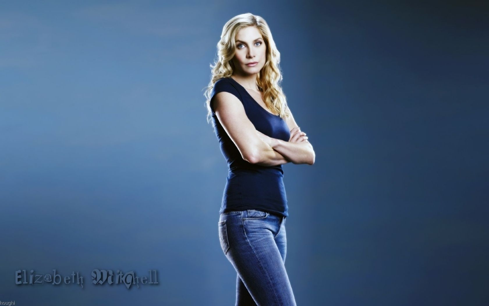 elizabeth mitchell computer hd - photo #9