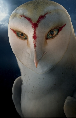 Enya, leader of the owls of Frostclan (this clan, in case 你 haven`t noticed)