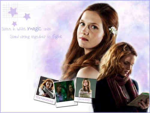 Ginny and Hermoine