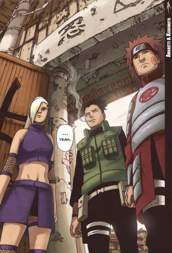 Ino, Shikamaru and Choji - naruto-shippuuden Photo