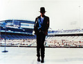 Michael Jackosn  - michael-jackson photo
