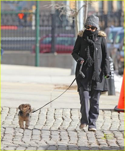 Natalie Portman & Benjamin Millepied Walk Hand in Hand