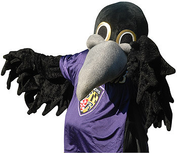 POE> THE RAVENS MASCOT! - baltimore-ravens Photo