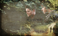 supernatural - Supernatural. wallpaper