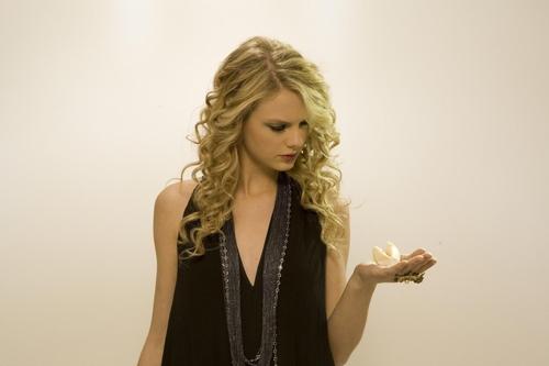 Taylor pantas, swift photoshot (HQ)