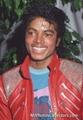 Thriller eraaa - michael-jackson photo