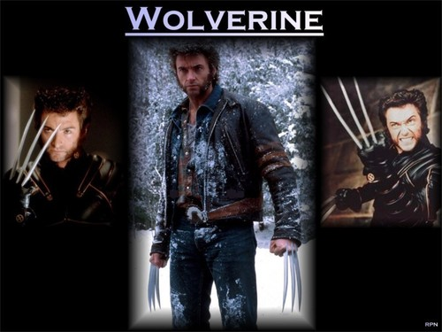 X-men THE MOVIE wallpaper possibly containing a sign and a concert titled Wolverine