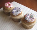 doughnuts - crazy-cupcakes photo