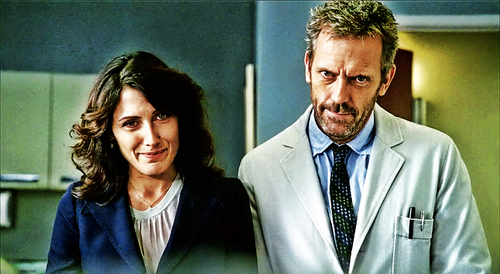 house and cuddy, the doctors
