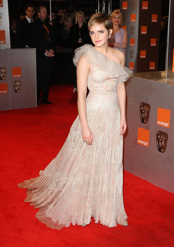 BAFTA's Awards 2011