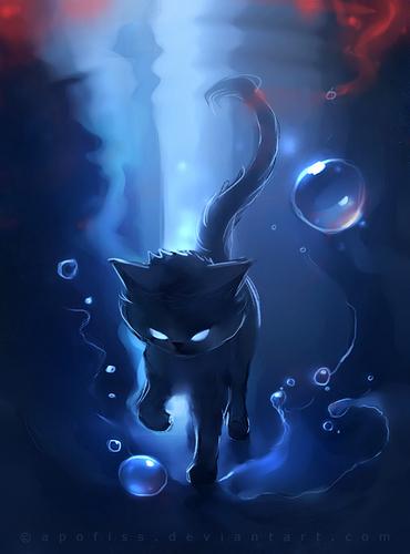 Cool Cat :D
