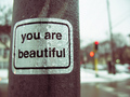 Everyone Is Beautiful *