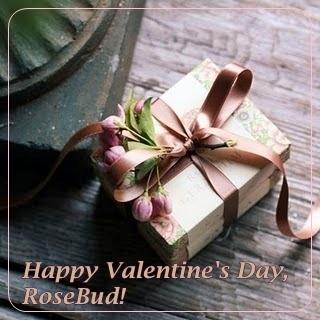 Happy Valentine's Day, Rose Bud!