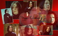 Happy Valentine's Day - severus-snape wallpaper
