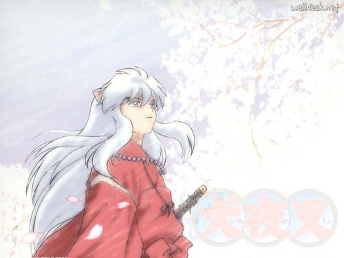 Inuyasha wallpaper possibly with anime titled Inuyasha
