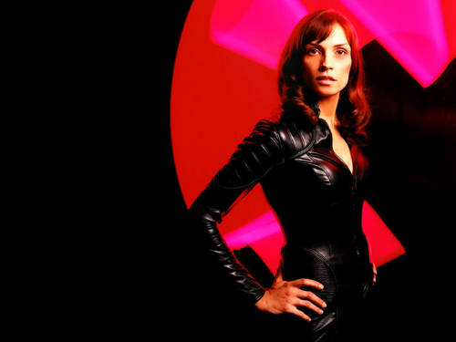 X-men THE MOVIE wallpaper probably containing tights, a bustier, and a leotard called Jean Grey