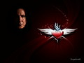 Love forever - severus-snape wallpaper