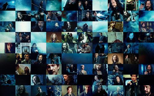 হ্যারি পটার দেওয়ালপত্র titled Lupin & Sirius