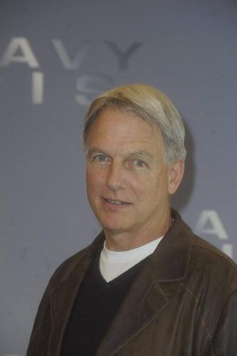 Mark Harmon in Europa