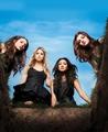 Pretty Little Liars - Season 1 - New Cast Promotional Photo (HQ)