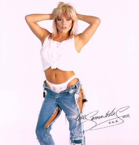The 80s wallpaper probably with bellbottom trousers and attractiveness entitled Samantha Fox!!