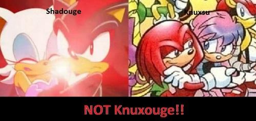 Shadouge and Knuxsu