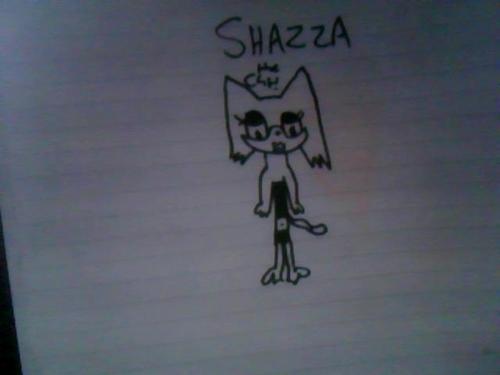 Shazza the cat