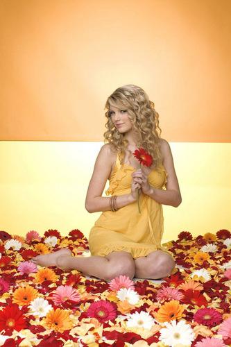 Taylor schnell, swift photoshot (HQ)