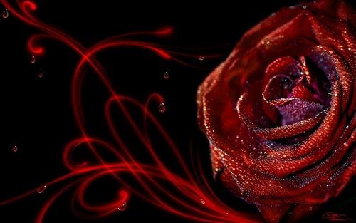 Valentine's day:D