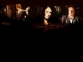 the-mentalist - Various Wallpapers wallpaper