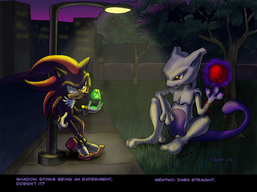 shadow and mewto
